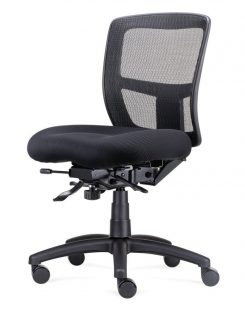 Ergo Task chair