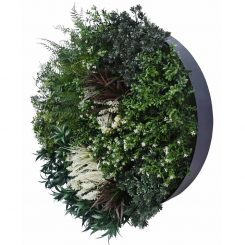 Splice 80 Greenery Wall Disc